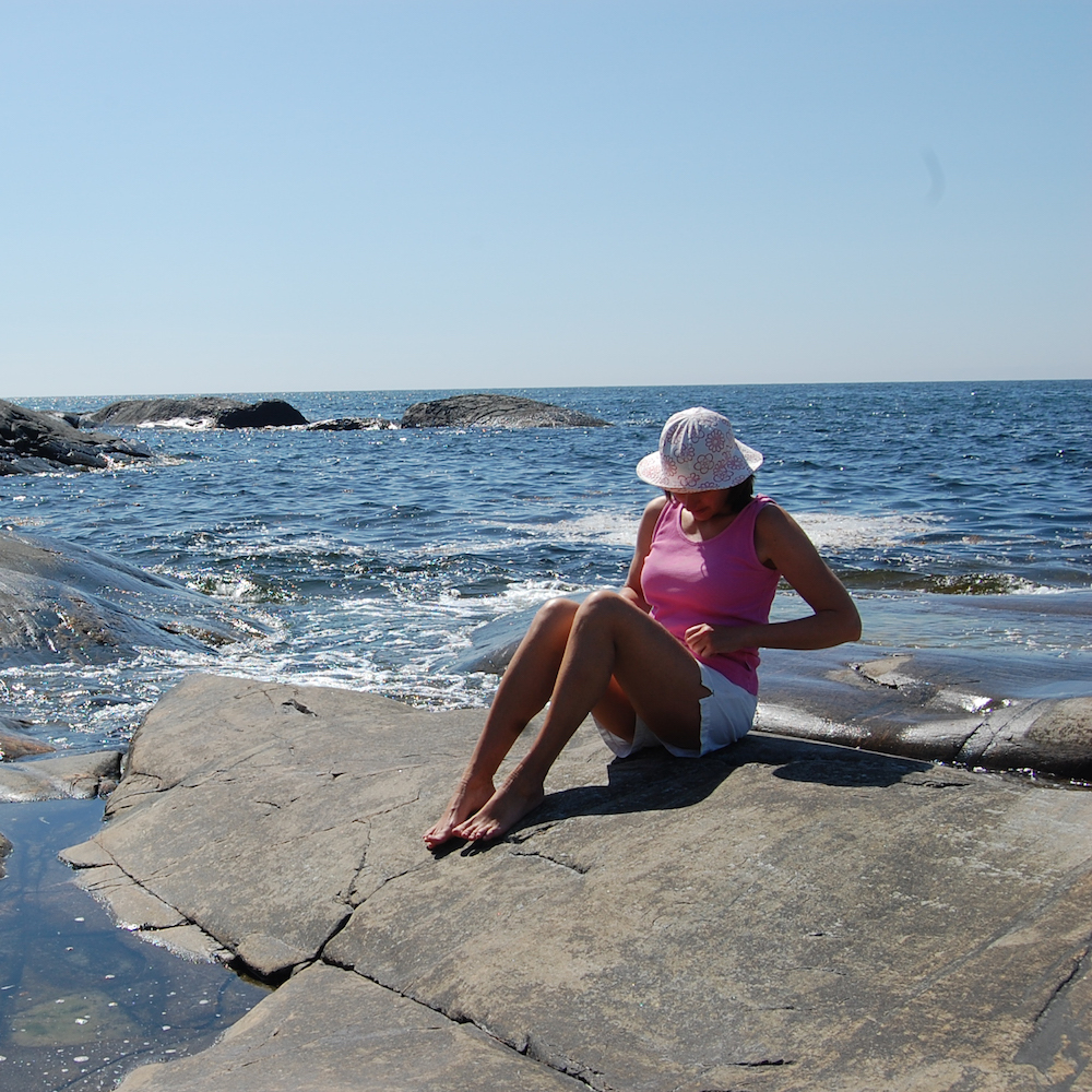 EduBorealis Summer
